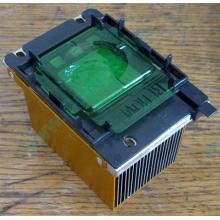 Радиатор HP p/n 279680-001 (socket 603/604) - Бердск