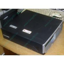 Компьютер HP DC7100 SFF (Intel Pentium-4 520 2.8GHz HT s.775 /1024Mb /80Gb /ATX 240W desktop) - Бердск