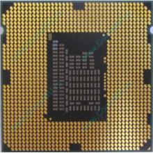 Процессор Intel Celeron G540 (2x2.5GHz /L3 2048kb) SR05J s.1155 (Бердск)
