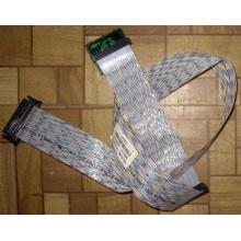Кабель IBM 32P0578 68-pin SCSI Cable XSERIES (FRU 49P3231) - Бердск